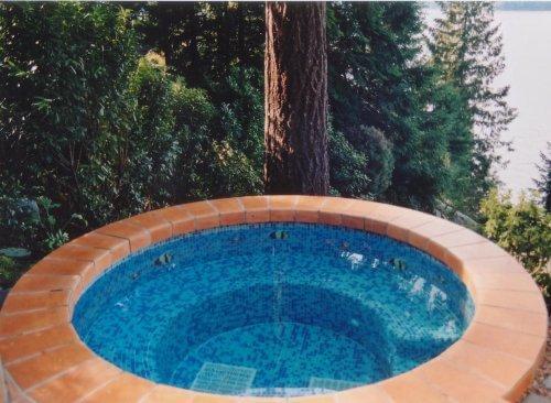 Trasolini Pools