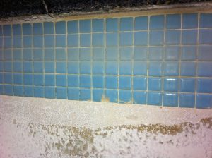 pool maintenance vancouver, pool company vancouver, trasolini pools