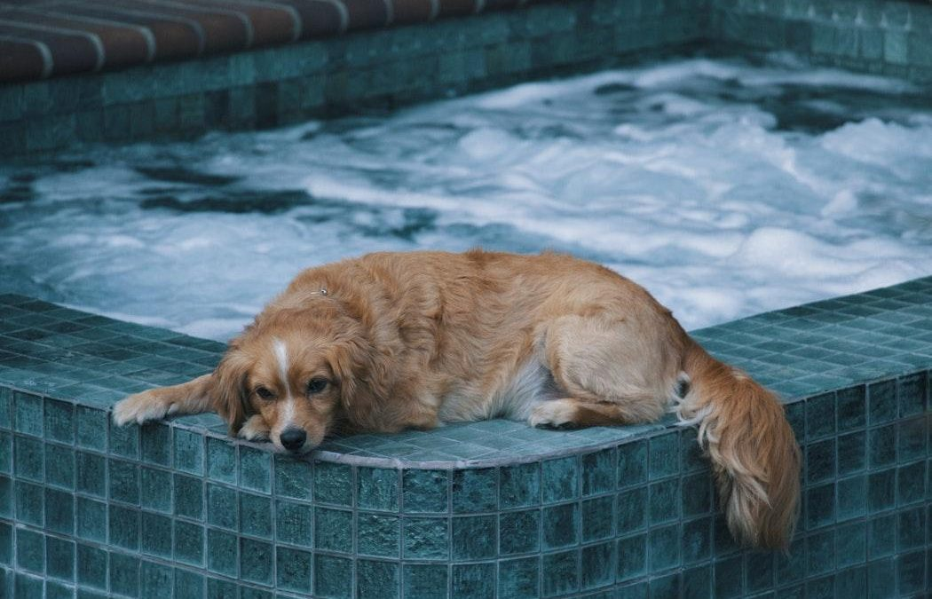 6 outdoor hot tub maintenance tips for the winter