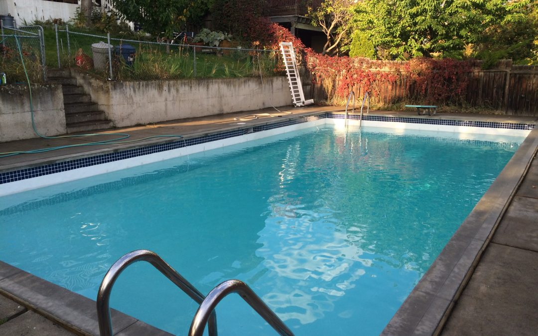 The pros and cons of 5 common types of pool finishes